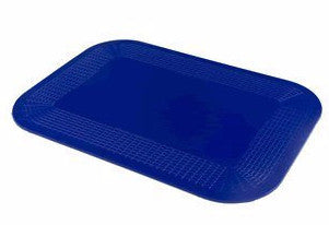 "Dycem 14"" x 10"" Mat - Budget Medical Supplies"