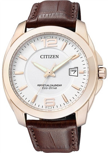 Citizen Eco-Drive Analog BL1243-00A Watch (New with Tags)