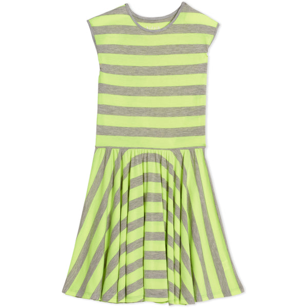 Stripe Skater Tank Dress