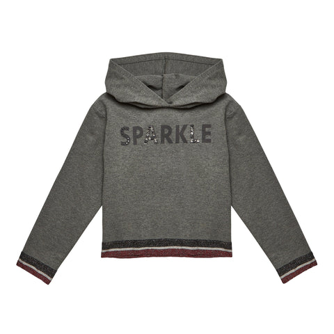 Sparkle Fleece - Dark Heather Grey
