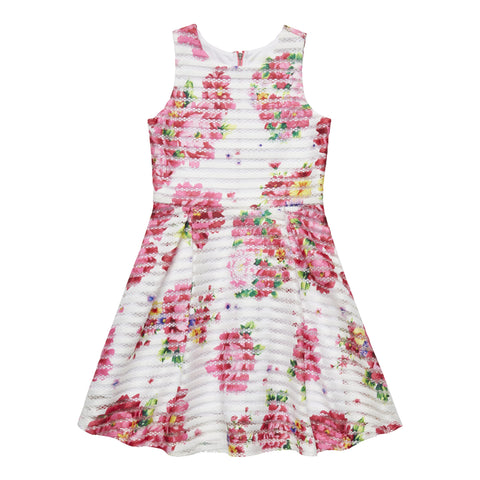Peony Stripe Dress - Fuchsia Purple