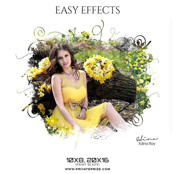 Edina Roy - Easy Effect - Photography Photoshop Template