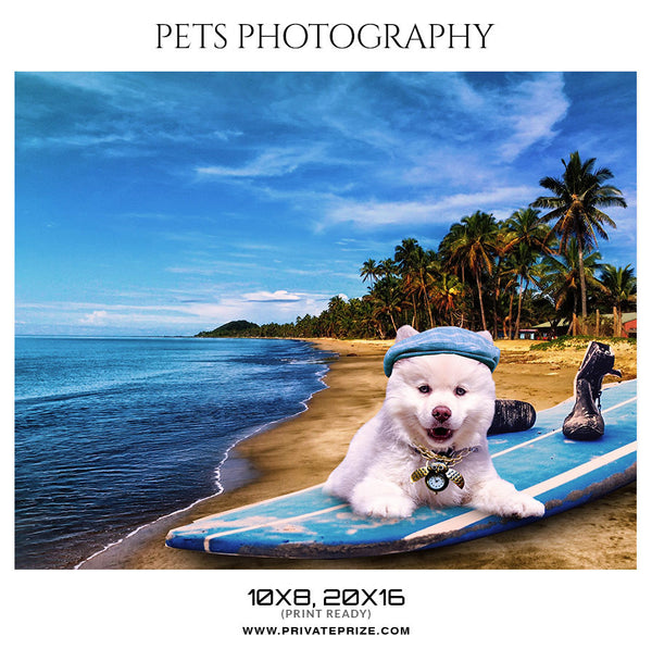 TIGGER - PETS PHOTOGRAPHY - Photography Photoshop Template