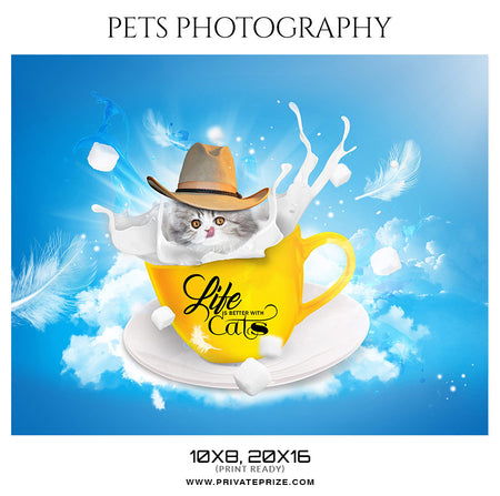 Taffy - Pets Photography - Photography Photoshop Template
