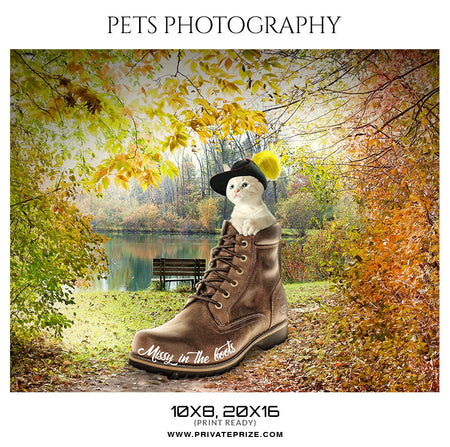 MISSY IN THE BOOTS - PETS PHOTOGRAPHY - Photography Photoshop Template