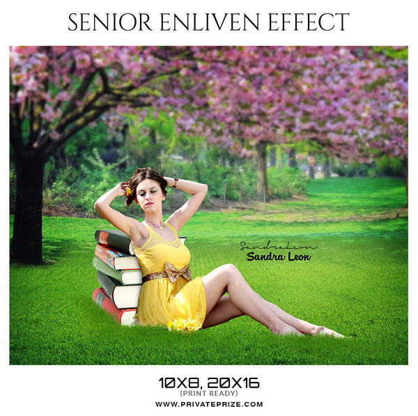 Sandra Leon - Senior Enliven Effect Photoshop Template - Photography Photoshop Template