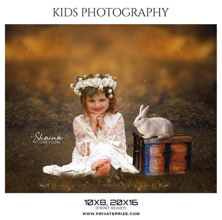 Shaina Greyson - Kids Photography Photoshop Templates - Photography Photoshop Template
