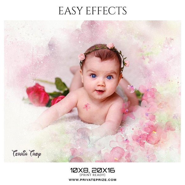 Terrin Troy - Easy Effects - Photography Photoshop Template