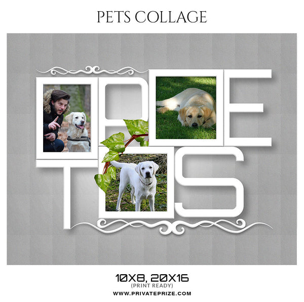 MAX DOG COLLAGE - PETS PHOTOGRAPHY - Photography Photoshop Template
