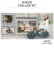 Ashley - Senior Collage Photoshop Template - Photography Photoshop Templates