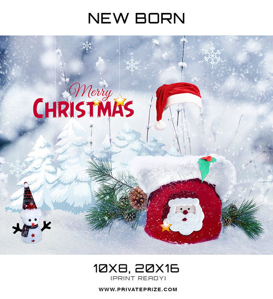 New Born Christmas Basket - Digital Backdrop - Photography Photoshop Templates