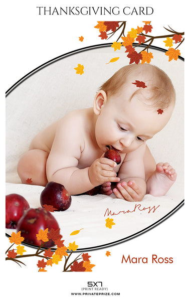 Mara Ross - Thanksgiving card - Photography Photoshop Template