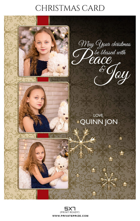 Quinn Jon - Christmas Card - Photography Photoshop Template
