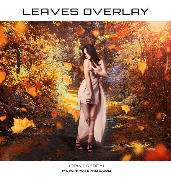 Leaves Overlay - Photography Photoshop Templates