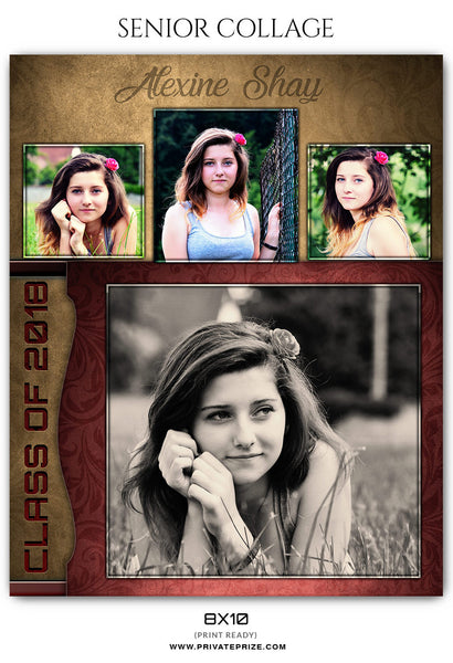 ALEXINE SHAY - SENIOR COLLAGE - Photography Photoshop Template