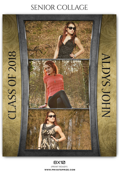 ALDYS JOHN -SENIOR COLLAGE - Photography Photoshop Template