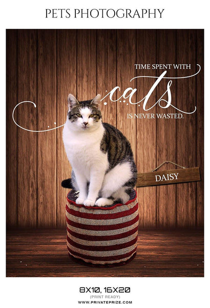 Daisy - Pets Photography Templates