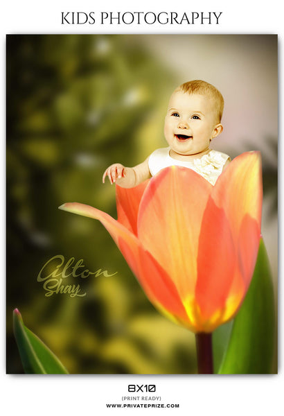 Alton Shay - Kids Photography - Photography Photoshop Template