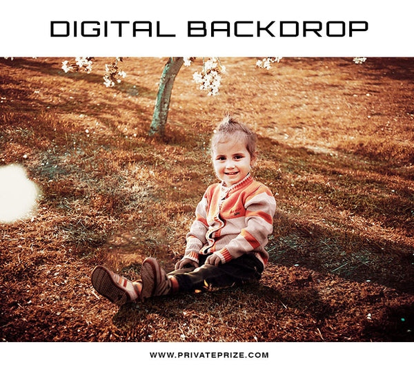 Digital Backdrop Winter Nature - Photography Photoshop Template