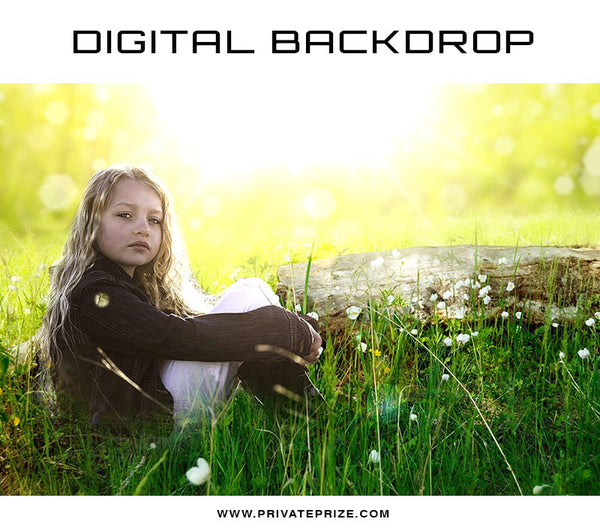 Digital Backdrop - Meadow Rays - Photography Photoshop Template