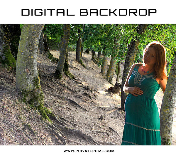 Digital Backdrop - Forest Tree - Photography Photoshop Template