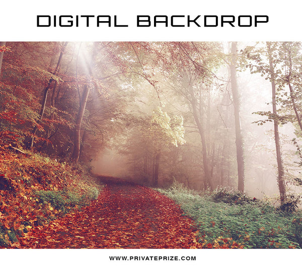 Digital Backdrop - Fall Rays - Photography Photoshop Template
