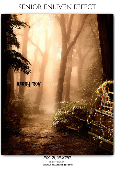 Kerry Roy - Senior Enliven EffectPhotoshop Template - Photography Photoshop Template
