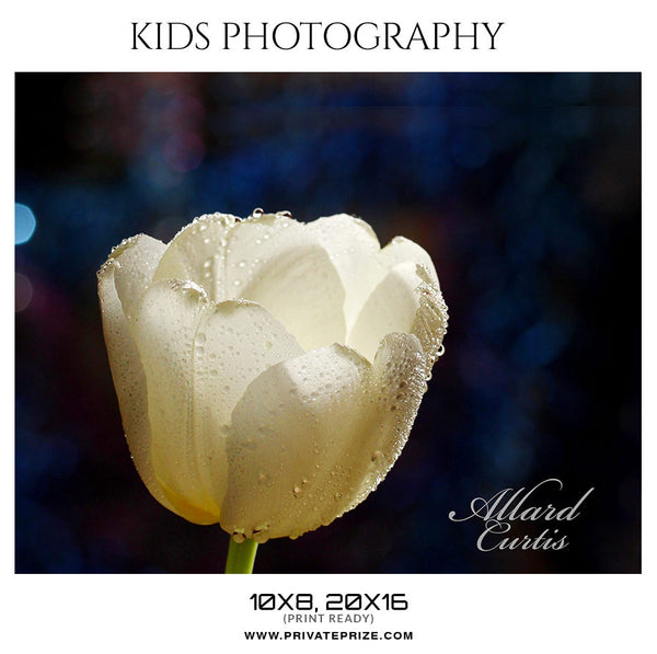 Allard Curtis - Kids Photography - Photography Photoshop Template