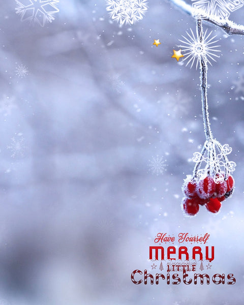 Little Merry Christmas Digital Backdrop - Photography Photoshop Templates