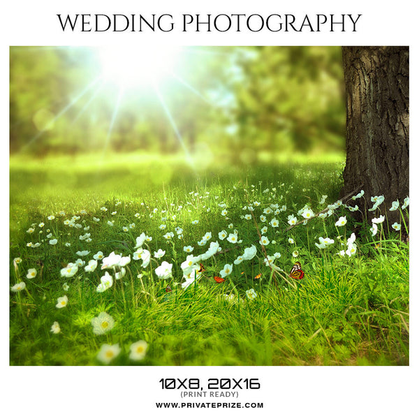 ARIA -  WEDDING PHOTOGRAPHY - Photography Photoshop Template