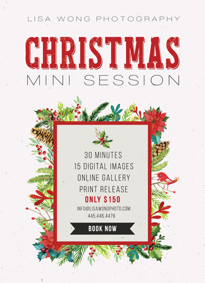 Christmas Mini Session Flyer Template for Photographers - Photography Photoshop Templates