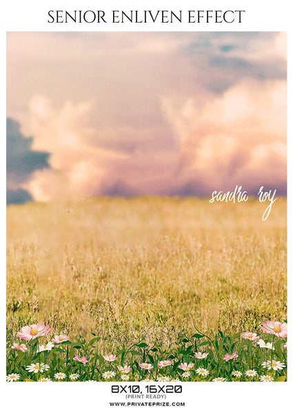 Sandra Roy - Senior Enliven Effect Photography Template