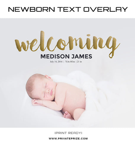Welcoming Golden Font Overlay - Photography Photoshop Templates