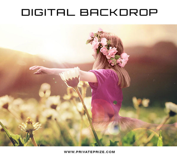Digital Backdrop - Afternoon Rays - Photography Photoshop Template