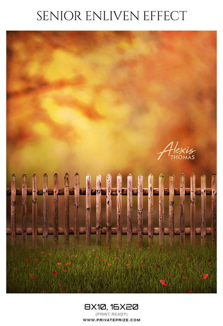 Alexis Thomas - Senior Enliven Effect Photography Template - Photography Photoshop Template