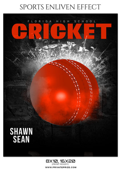 SHAWN SEAN - CRICKET SPORTS PHOTOGRAPHY - Photography Photoshop Template