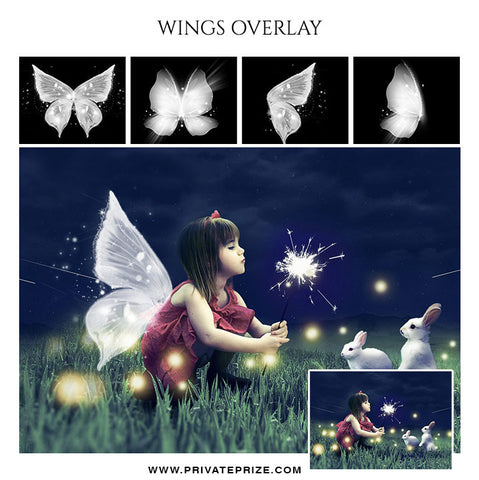Wings Overlays - Photography Photoshop Template