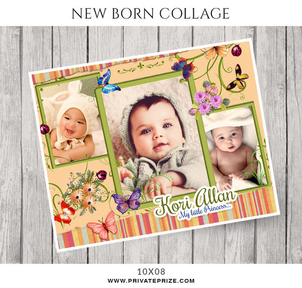 Korry Allan -New Born Collage - Photography Photoshop Template