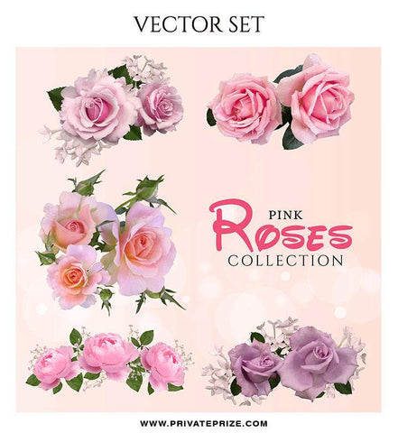 Pink Rose Collection - Valentines Vector Graphics Set - Photography Photoshop Template