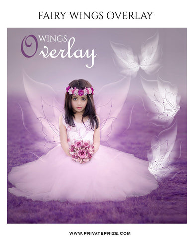 Wings Overlay - Photography Photoshop Template