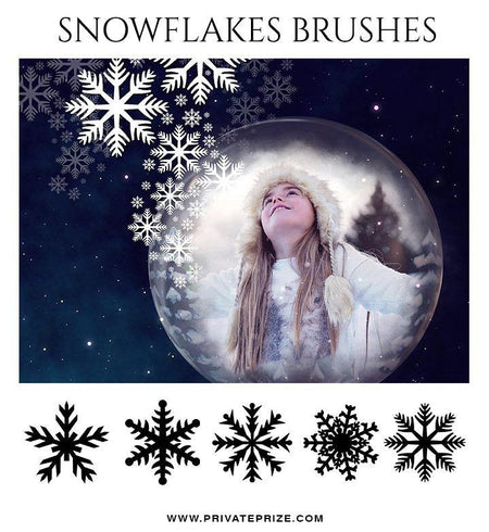 Snow Flakes Brushes and Digital Overlays - Photography Photoshop Template