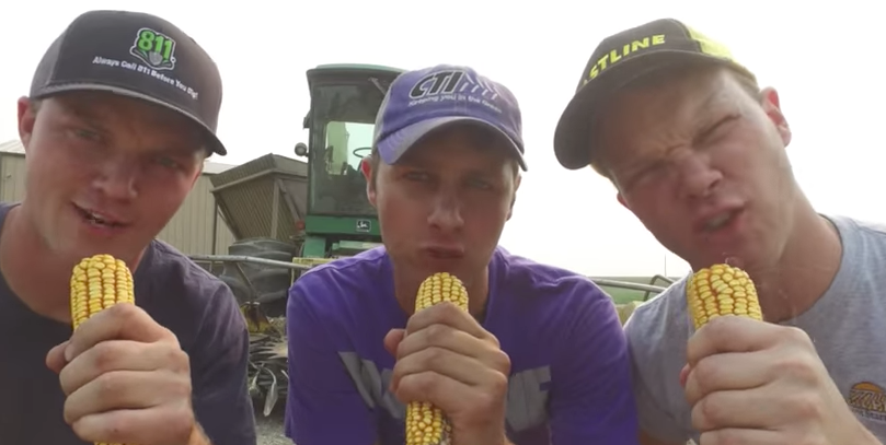 Peterson Farm Bros strike again: Forage Harvester You Tube video