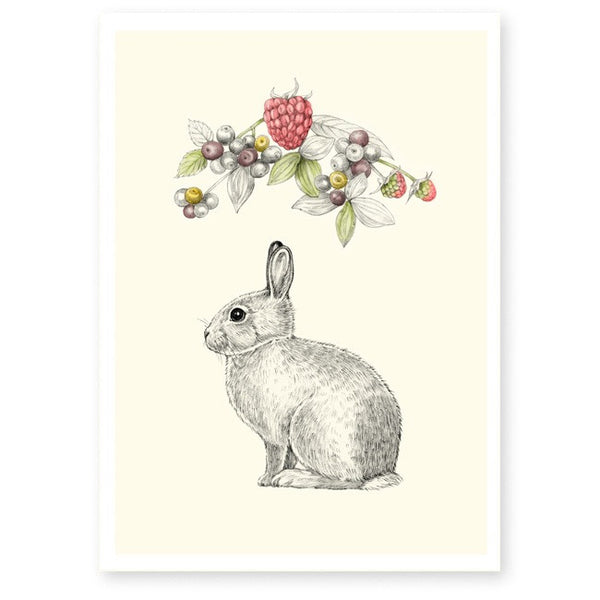 Affiche A4 lapin framboise briki vroom vroom