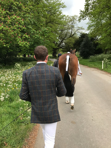 James Sommerville and Talent Badminton Trot up 2017
