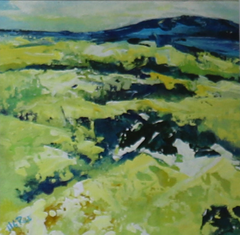 Hugh G. Rice : Blue Hills, Co. Antrim