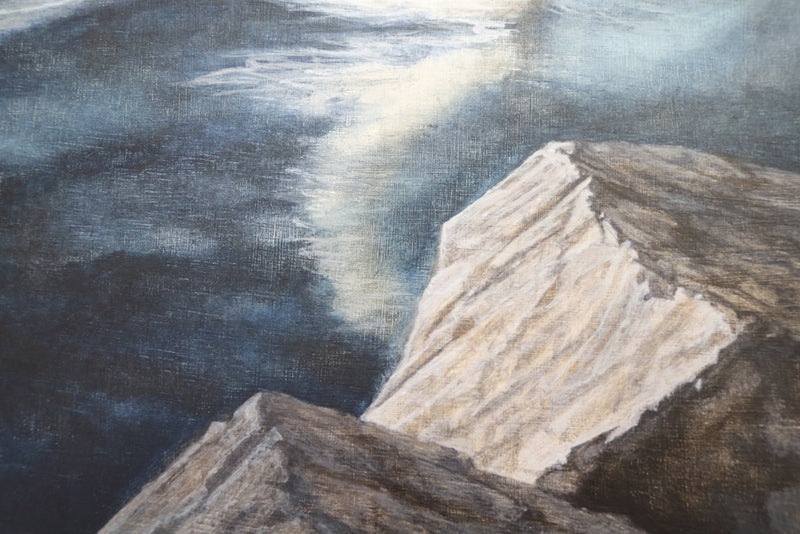Detail of the rocks placed in the foreground of the Belfast reservoir swan painting
