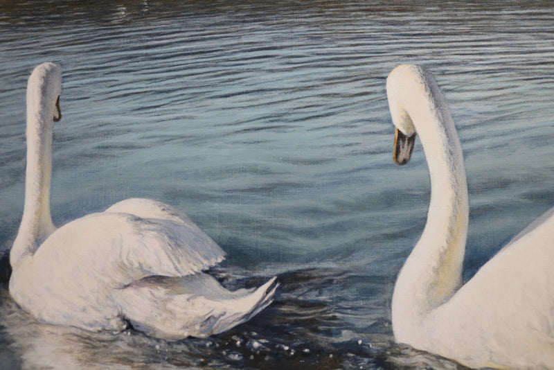 Detail of two of the swans, gliding away from the viewer.