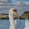 this photo shows a detail of the swan's head looking at you whilst floating on the deep blue reservoir water. In the background you can see the red brick and white houses painted with amazing detail to add to the photo-realistic nature of this acrylic painting by John Coffey.