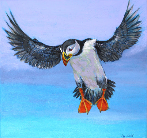 Alison Jess - About to Land - Puffin
