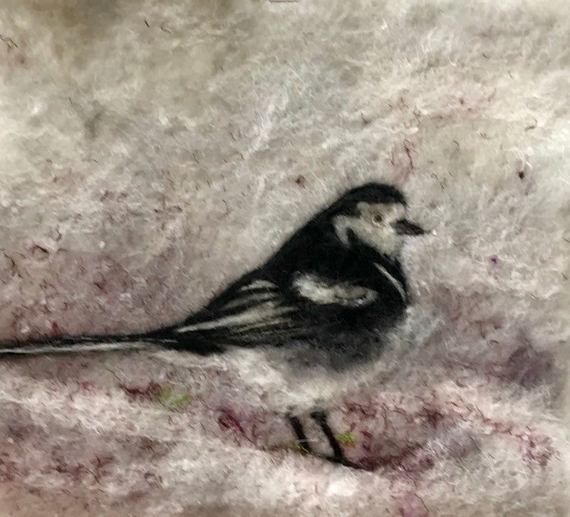 Marie-Louise Gormley:  Pied Wagtail
